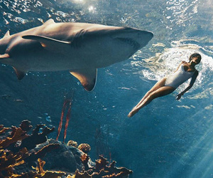 rihanna, shark, and sea image