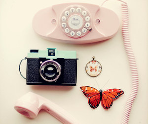 butterfly, camera, and pastel image