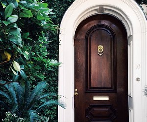 green, dark tropical, and door image