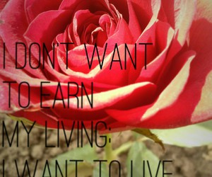 inspiration quote rose image
