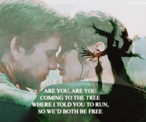 the hanging tree image