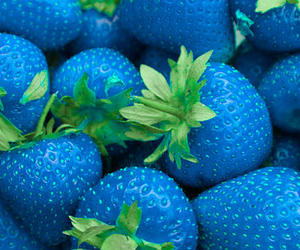 blue, strawberry, and fruit image