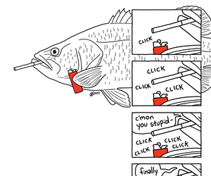 fish, funny, and lol image