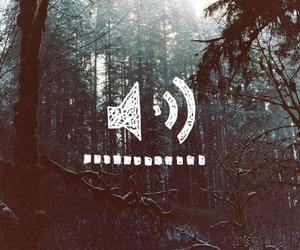 dark, darkly, and forest image