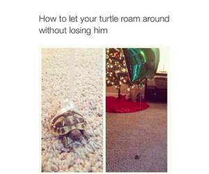 turtle, cute, and balloon image