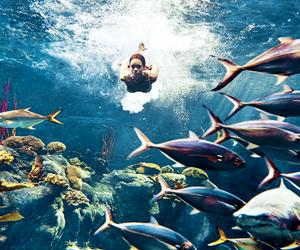 rihanna, sea, and fish image