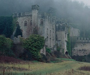 castle, fog, and nature image