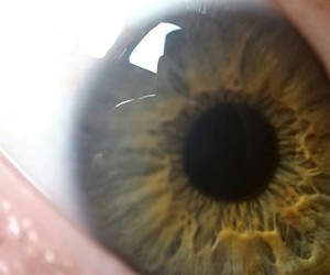 auge, green, and pupil image
