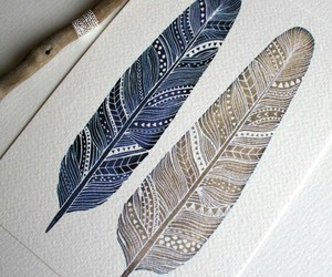 feathers and drawing image