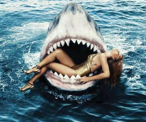 rihanna and shark image