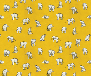 elephant, yellow, and background image