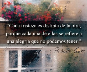flores, frases, and libros image