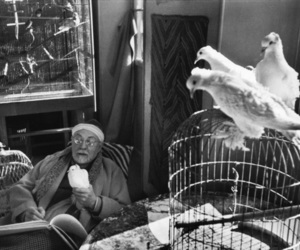 henri matisse, portrait, and by cartier bresson image