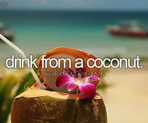 coconut and drink image