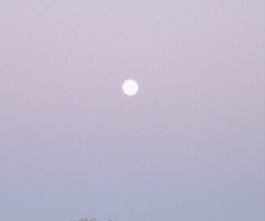 moon, pale, and beautiful image