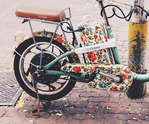 bicycle, bike, and floral image