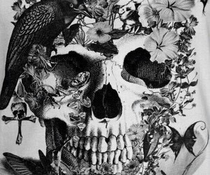skull, flowers, and bird image