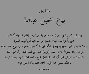 arabic, text, and حب image