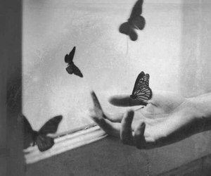 hand and butterfly image