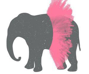 elephant, pink, and tutu image