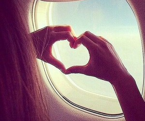 love, fly, and heart image
