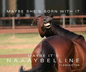 funny, horse, and Maybelline image
