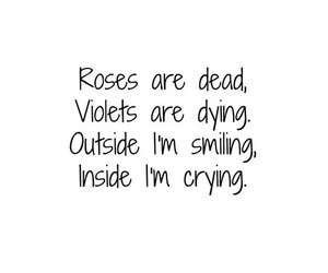 sad, quote, and roses image