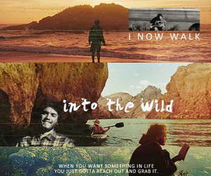 into the wild and life image