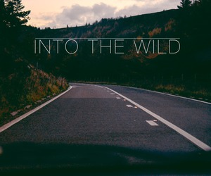 road, woods, and trip image