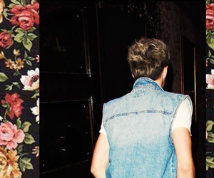wallpaper, 1d, and niall image