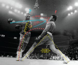 boxing and ali image
