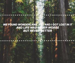 iphone wallpaper, Lyrics, and wallpaper image