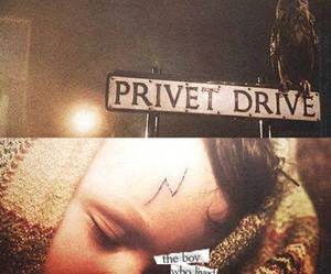 harry potter, privet drive, and the boy who lived image