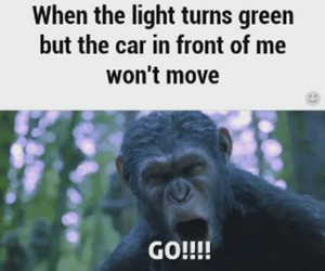angry, car, and funny image