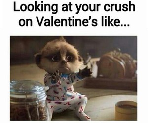crush, valentine, and funny image