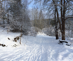 hike, nature, and snow image