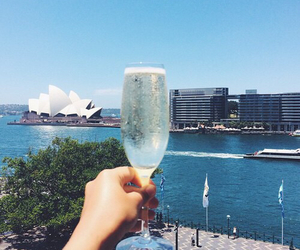champagne, drink, and life image
