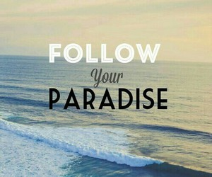 paradise, follow, and your image