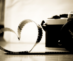 heart, camera, and photography image