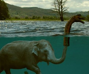 elephant, funny, and monster image