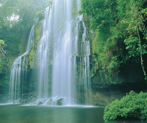 costa rica, nature, and waterfall image