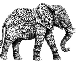 elephant, Ganesh, and pachyderm image