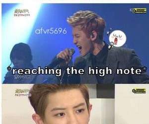exo, funny, and suho image