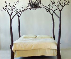 bed, tree, and nest image