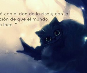 cat, smile, and frases image
