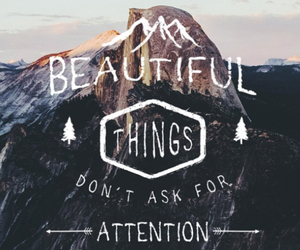 beautiful, quotes, and attention image