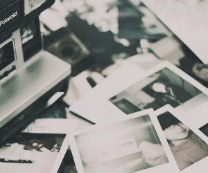 camera, polaroid, and header image