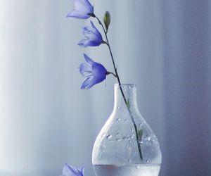 nature, beautiful, and blue image