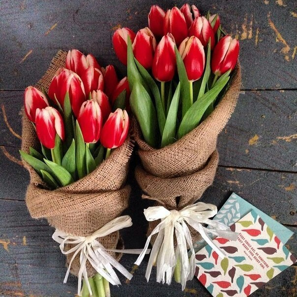 beautiful, flowers, and tulips image