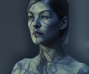 rosamund pike, actress, and gone girl image